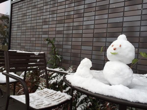 熊本で雪が降りました